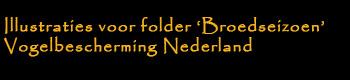 Illustraties voor folder 'Broedseizoen', Vogelbescherming Nederland
