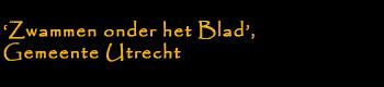 'Zwammen onder het Blad', Gemeente Utrecht